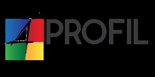 Logo Profil Jeune 4Colors